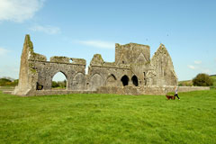 ruins of Hore Abbey, County Tipperary, Ireland