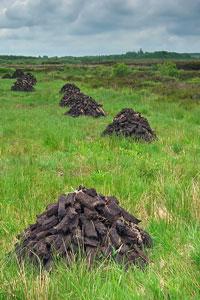 drying peat in a rural peat bog